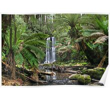 down stream from Beauchamp Falls Poster