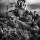 Château Gaillard by Michael Carter