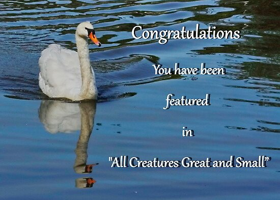 """Banner - All Creatures Great and Small"""" by AnnDixon"""