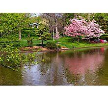Japanese Garden Scene Photographic Print
