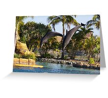 Acrobatic Dolphins Greeting Card