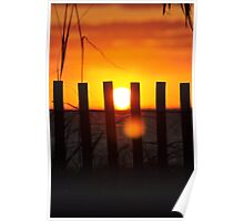 Delray Beach Sunrise through the dune fence Poster