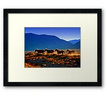 Mustang Trail Framed Print