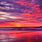 Sunshine Coast - The Scapes by Kate Wall