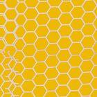 Honeycomb by rapplatt