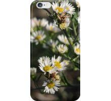November blooms iPhone Case/Skin