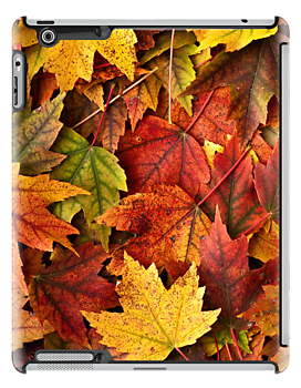 Autumn Leaves-iPad by onyonet photo studios