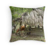Mountain Pine Ridge Area in San Ignacio - Belize, Central America Throw Pillow