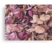Hydrangea (Available in iPhone, iPod & iPad cases) Canvas Print