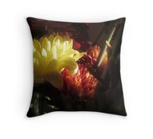 AS IS Kitchen Window Lighting Throw Pillow