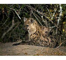 Hyena Den Photographic Print