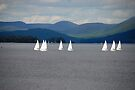 Sailing Lessons by John Schneider
