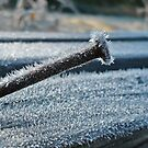 Hard As Nails Cold As Ice IPad Case by Elizabeth Burton