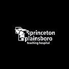princeton plainsboro teaching hospital - House for the ipad by ludlowghostwalk