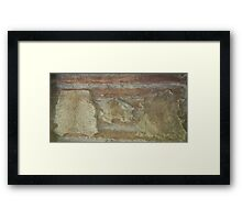 Stretched and Dried Framed Print