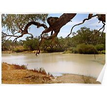 Cooper Creek, South Australian Outback Poster