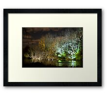 Illuminated trees at St James Park London by night Framed Print