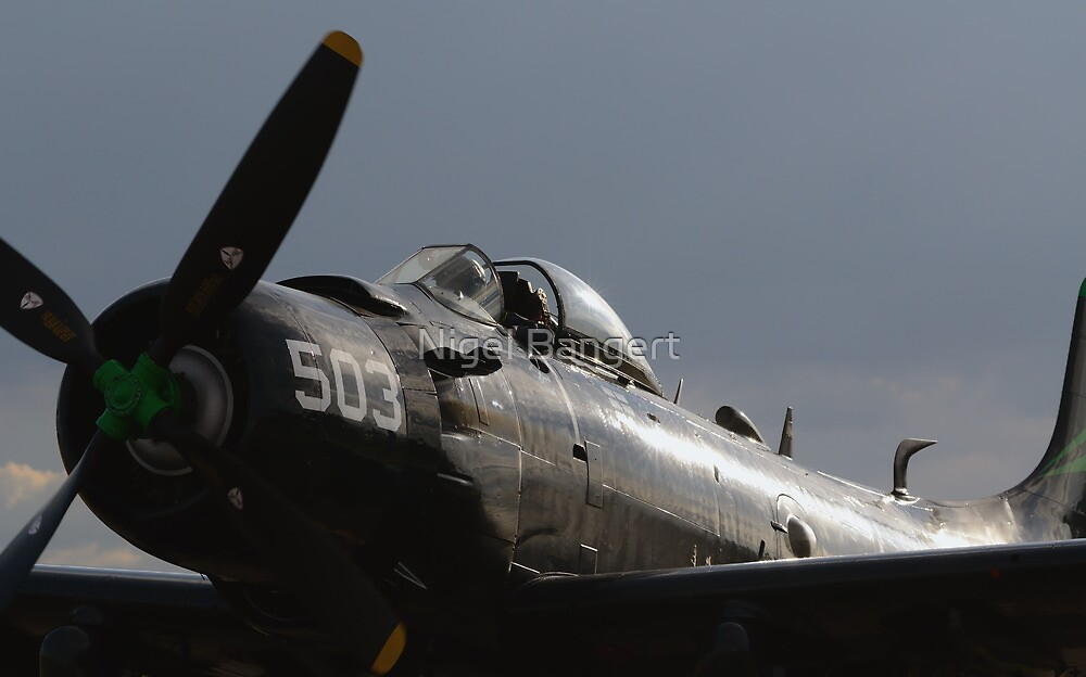 Douglas AD-4NA Skyraider by Nigel Bangert