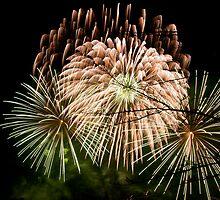 Fireworks at Battersea Park by Magdalena Warmuz-Dent