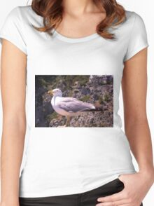 Profile of a Seagull Women's Fitted Scoop T-Shirt