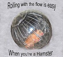 Rolling Hamster by tulsa7035