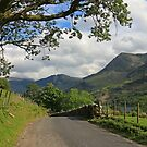 Country Road Take Me Home by RoystonVasey