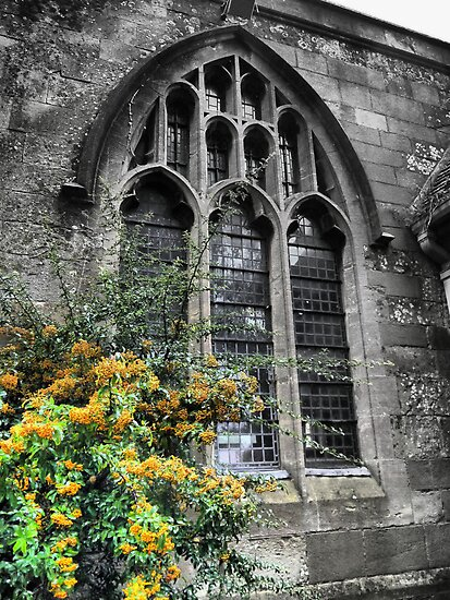 St.Mary in Hailsham (2) by Larry Lingard-Davis