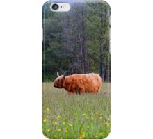 Spring In The Highlands iPhone Case/Skin