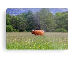 Spring In The Highlands Metal Print