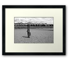 Last stand Framed Print