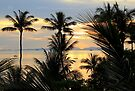 Thai Palm Sunset - Railay West by Honor Kyne
