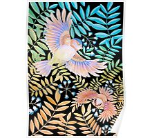 Birds of Paradise Poster