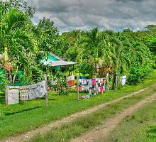 Laundry Day in Bullet Tree Falls Village - Belize, Central America by Jeremy Lavender Photography