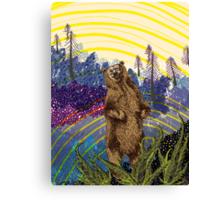 Ursidae Canvas Print