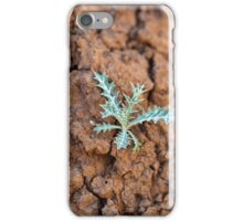 Small plant on dry earth iPhone Case/Skin
