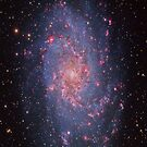 The Triangulum Galaxy by Cole Pickup