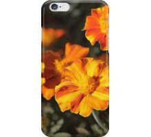 Tagetes Flowers iPhone Case/Skin