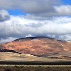 Colorful Desert Views by marilyn diaz