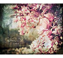 Wonderful Life Photographic Print
