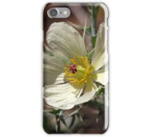 Flower of Mexican prickly poppy iPhone Case/Skin