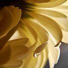 likeourmornings iPadcase by JillianLee