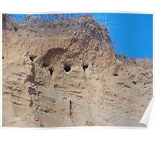Swallows nests in the cliffs Poster