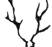 elk by Luke Brannon