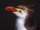 Royal Penguin Portrait by Carole-Anne