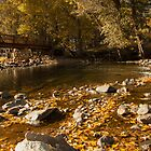 Yosemite Autumn by Vince Russell