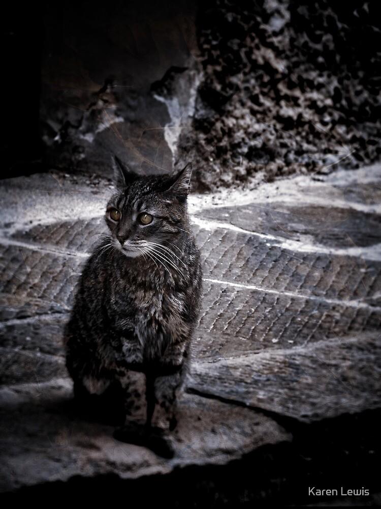 Tortishell Cat by Karen Lewis