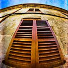 Old Spanish Window Shutters by marina63