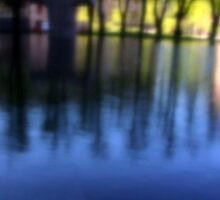 Blurred Tree Reflections by appfoto