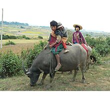 Children on buffalo, Shan State, Myanmar Photographic Print