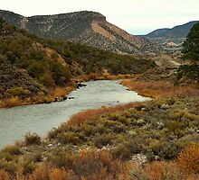 Rio Grande River - New Mexico by Michael Kannard